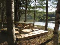 Dalton Primitive Campsite